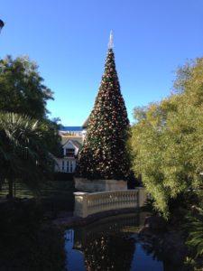 Las Vegas Town Square Santa Reservation