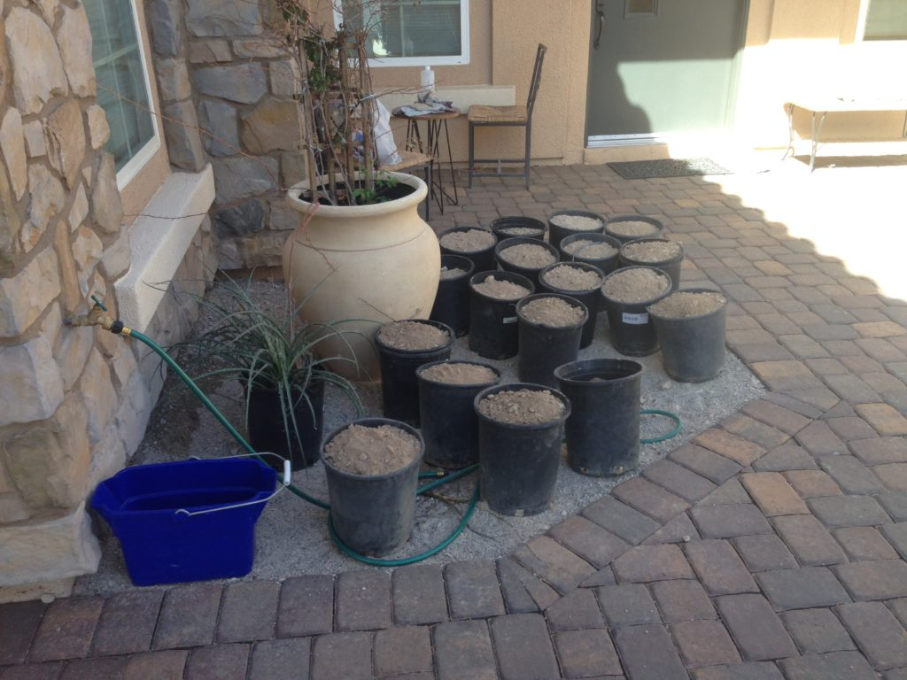 desert dirt with big rocks sifted out saved for planting